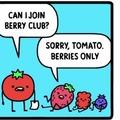 Berry club