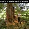 Macho Tóxico